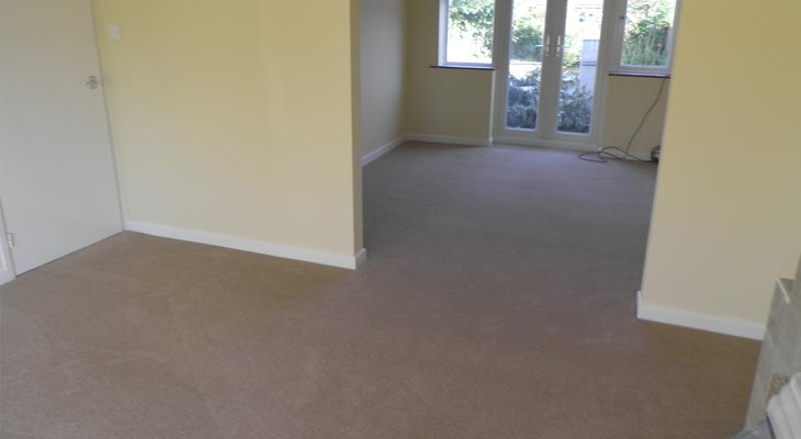 carpet in horsham living room