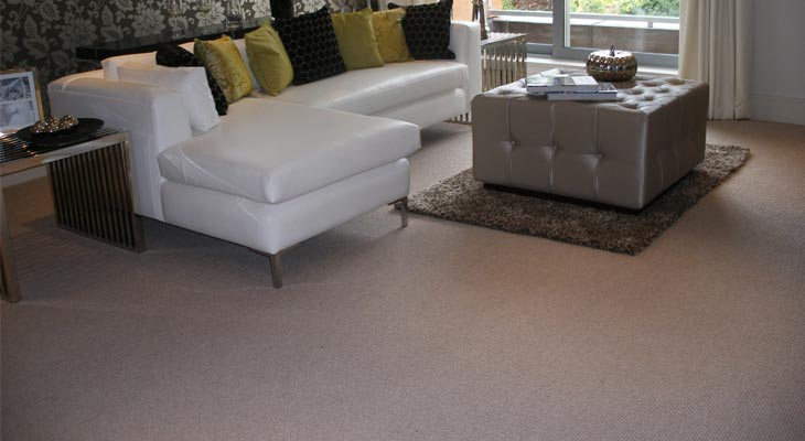 Euro-Pean Flooring Carpet Gallery 003