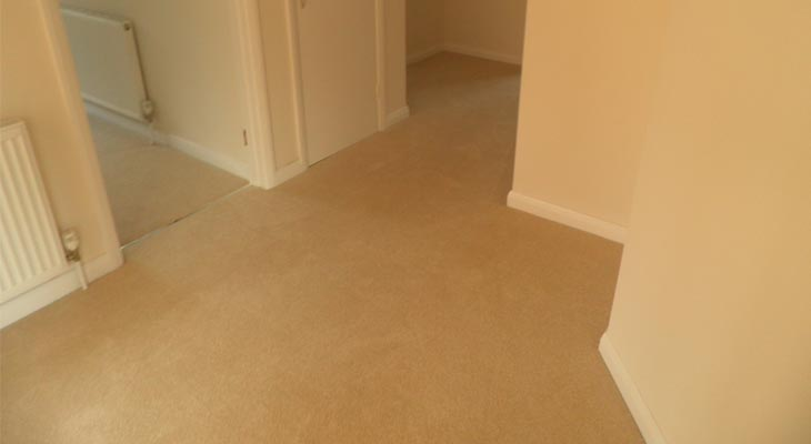 Euro-Pean Flooring Carpet Gallery 018