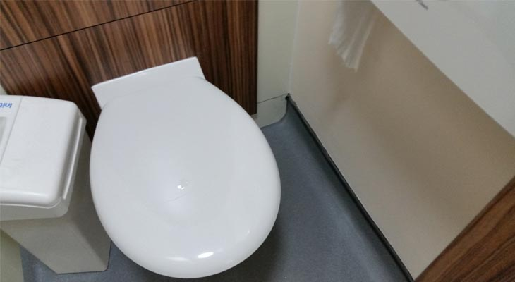 Inside a toilet cubicle with safety vinyl flooring and hygienic cove turned up the wall