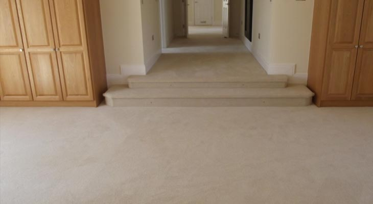 Carpeted steps down into the master bedroom